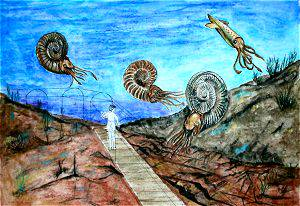 ammonity
