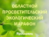 Награждение победителей конкурсов «Экомарафона – 2013»