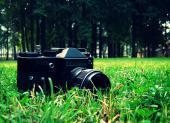 Итоги городского фотоконкурса «Мир в объективе молодых»